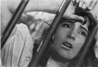Портрет актрисы Т. Самойловой в роли Вероники из фильма «Летят журавли»